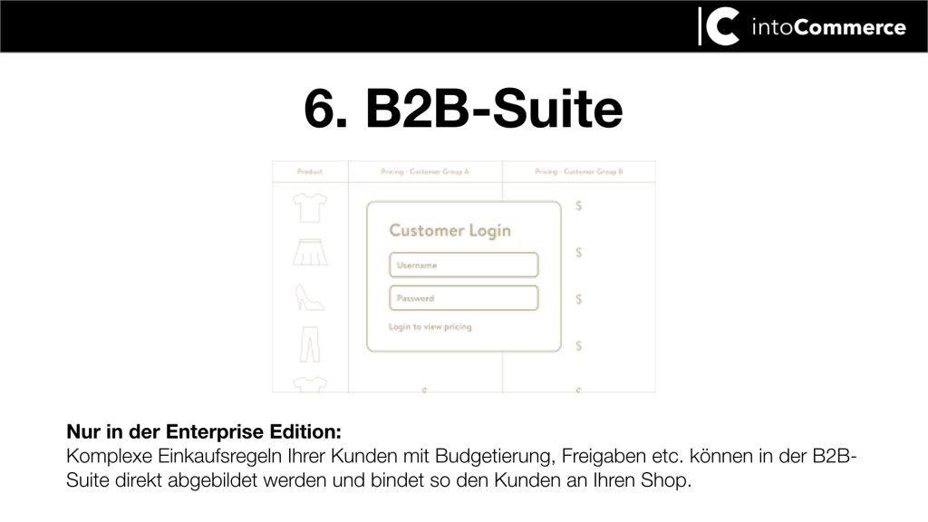 Bild zu custom Log in für B2B kunden